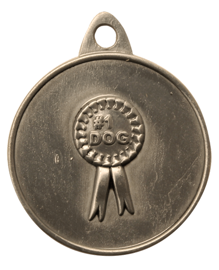 Hotdogs #1 Dog ID Tag with Engraving - Brass or Silver - Large