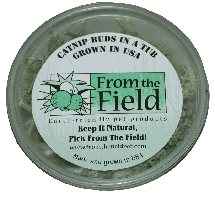 From the Field Fresh Catnip Leaf and Flower 1 oz Tub