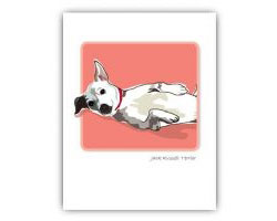 Grrreeting Card Jack Russell Belly Up