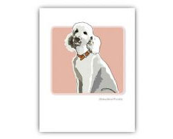 Grrreeting Card White Poodle Sitting