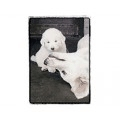 Very Super Cool Card #0756 White Mom and Puppy