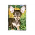 Very Super Cool Card #2963 Chihuahua Black and Tan