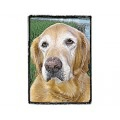 Very Super Cool Card #3614 Golden Retriever Senior