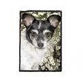 Very Super Cool Card #3914 Russel Chihuahua Mix