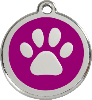 Red Dingo Stainless Steel Enameled Engraved ID Tag - Paw Prints - Medium - Pick a Color