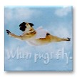 When Pugs Fly Magnet - Pick a Color