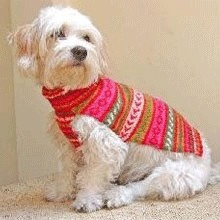 Handknit Alpaca Dog Sweater - Extra Small - Fiesta Roja