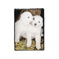 Very Super Cool Card #0453 Pyraneese Puppies